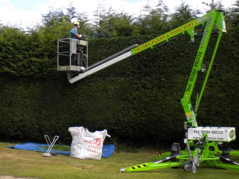 hedge cutting kent gardening tree surgery